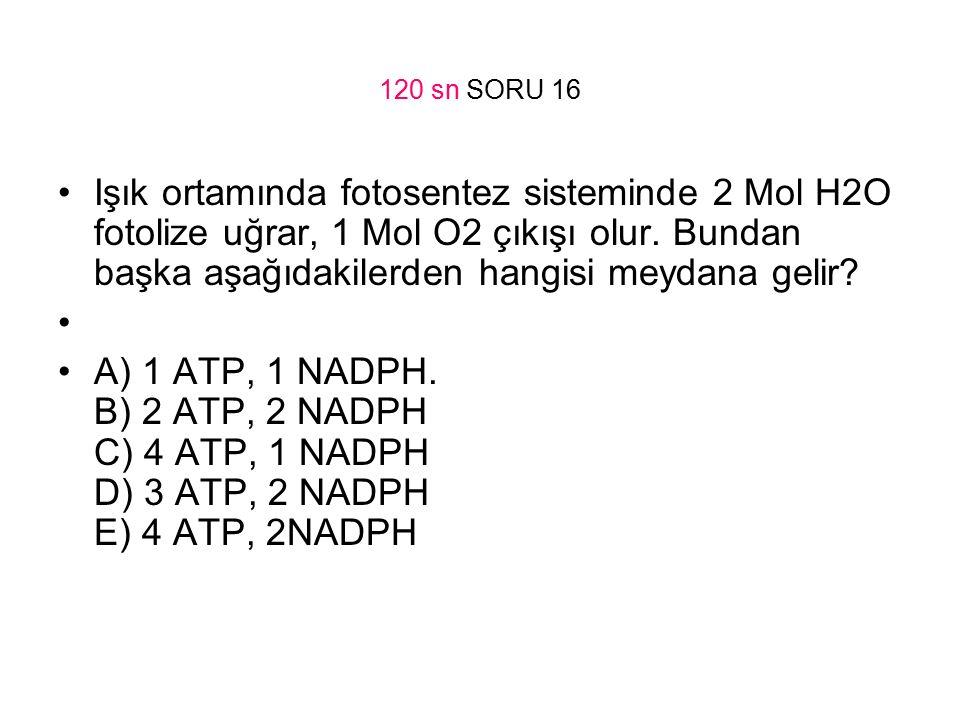 120 sn SORU 16