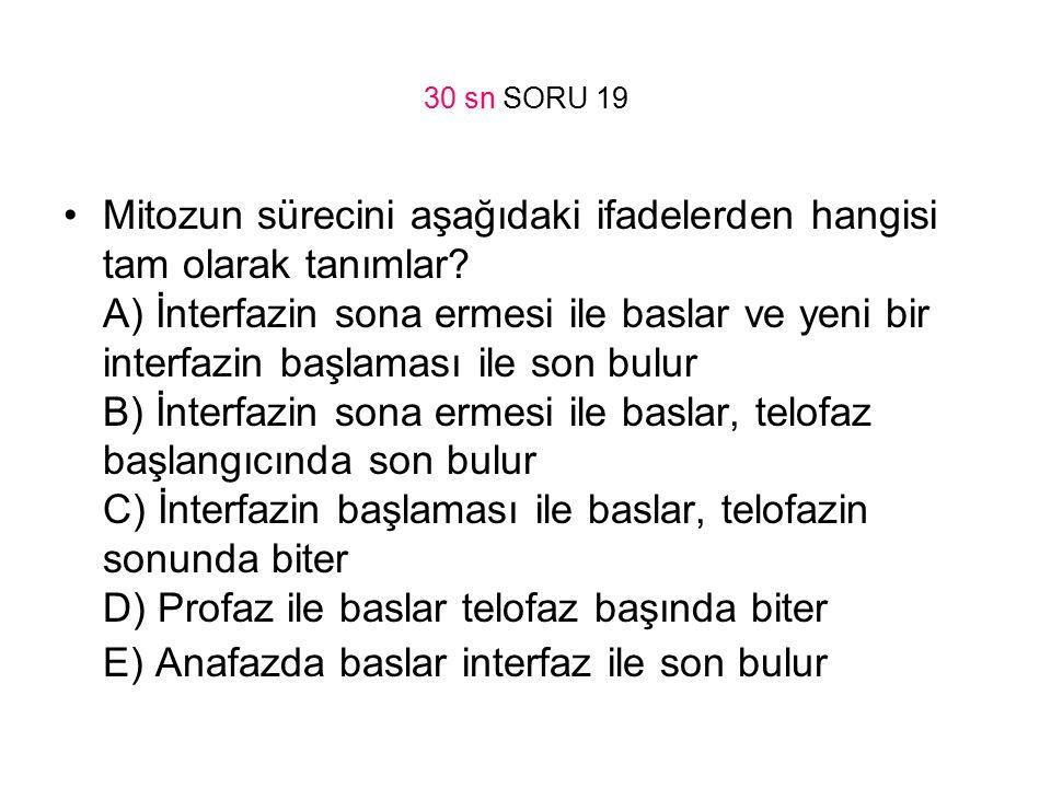 30 sn SORU 19
