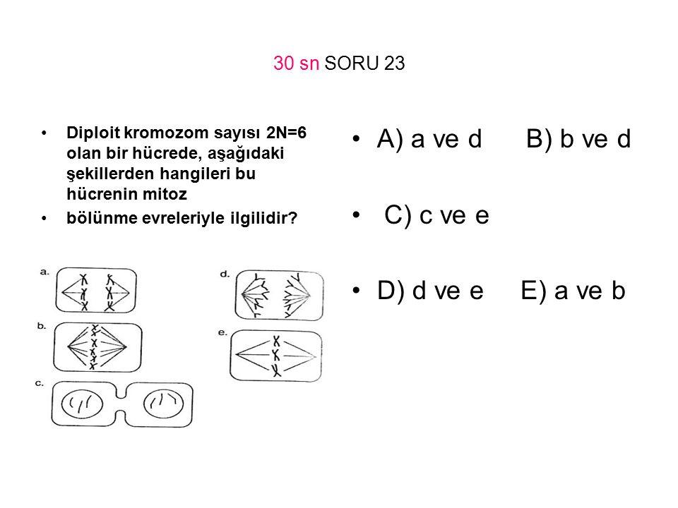 A) a ve d B) b ve d C) c ve e D) d ve e E) a ve b 30 sn SORU 23