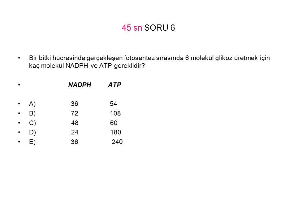 45 sn SORU 6 Bir bitki hücresinde gerçekleşen fotosentez sırasında 6 molekül glikoz üretmek için kaç molekül NADPH ve ATP gereklidir