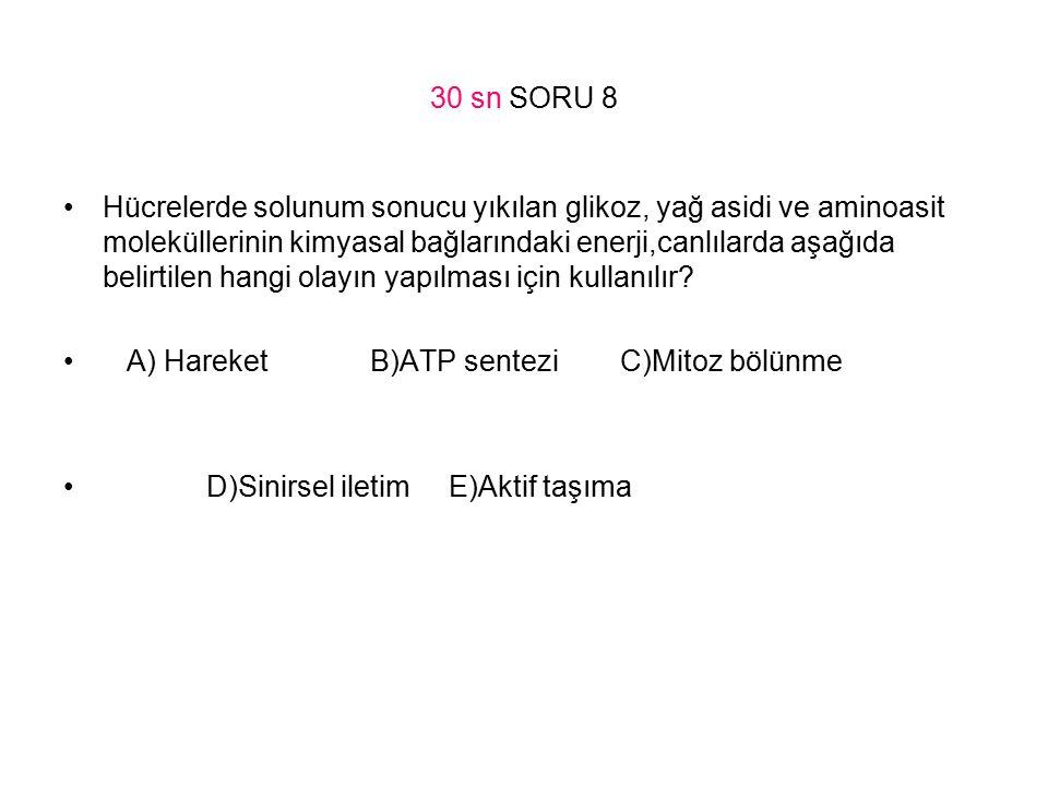 30 sn SORU 8