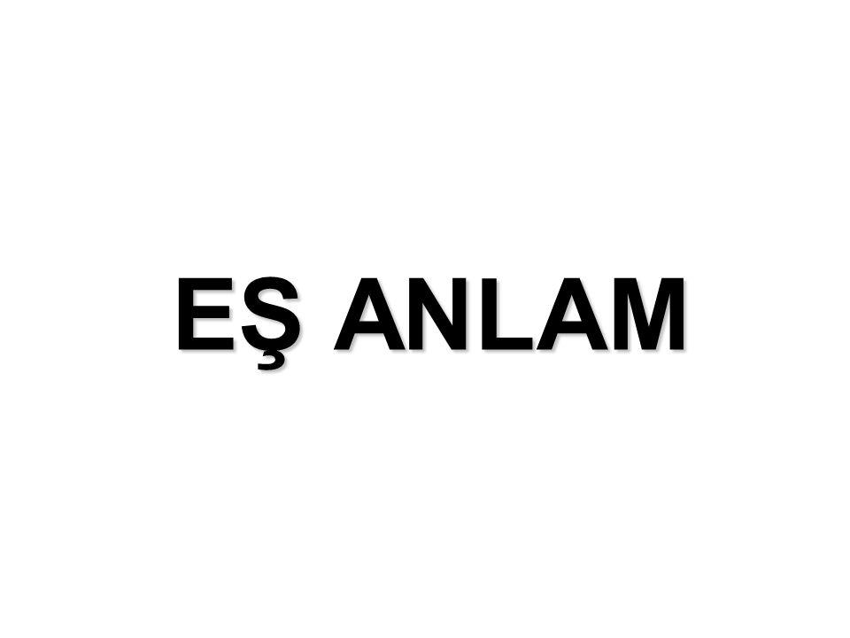 EŞ ANLAM