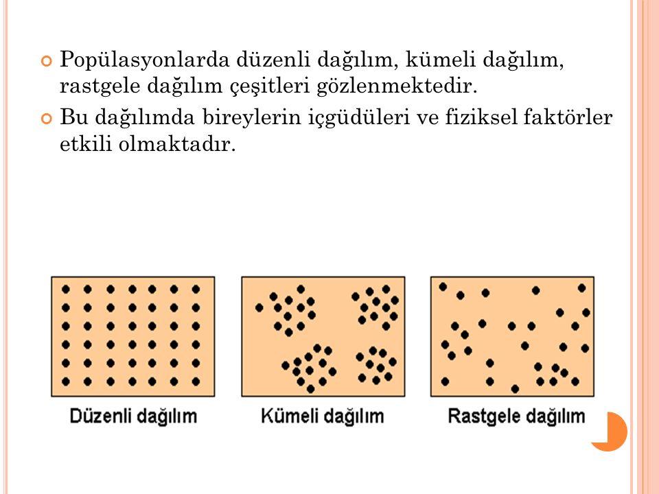 Popülasyonlarda düzenli dağılım, kümeli dağılım, rastgele dağılım çeşitleri gözlenmektedir.