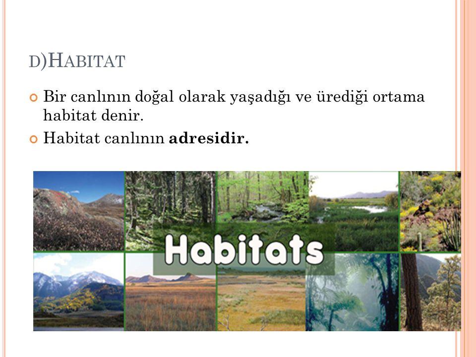 d)Habitat Bir canlının doğal olarak yaşadığı ve ürediği ortama habitat denir.