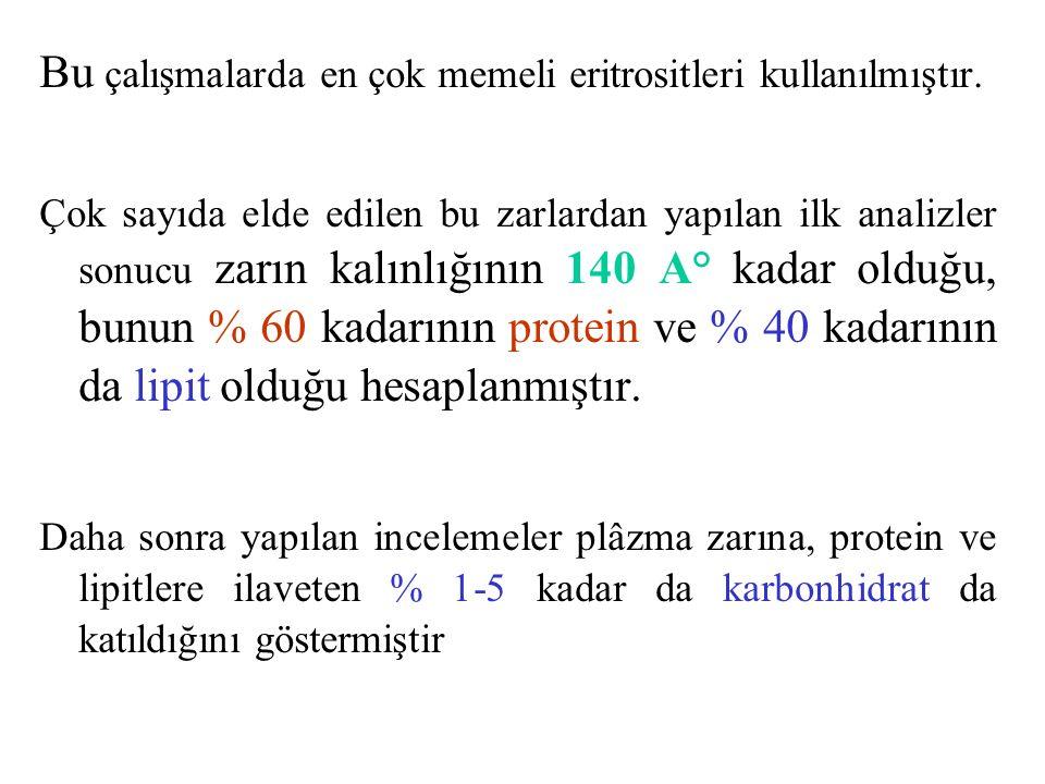 Bu çalışmalarda en çok memeli eritrositleri kullanılmıştır.