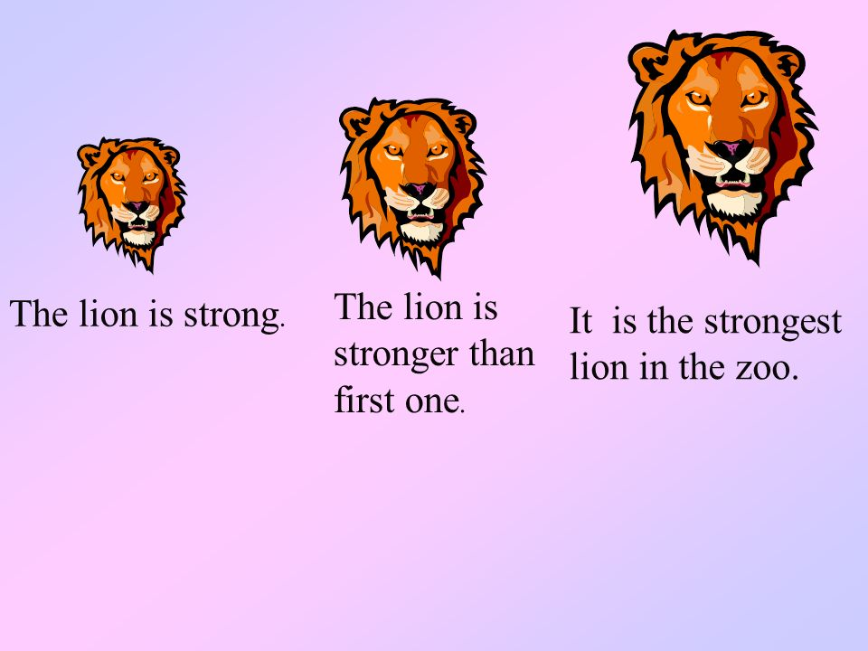 The lion is stronger than