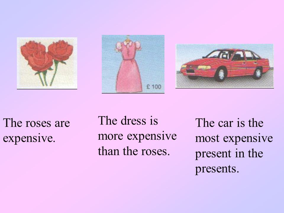 The dress is more expensive than the roses.
