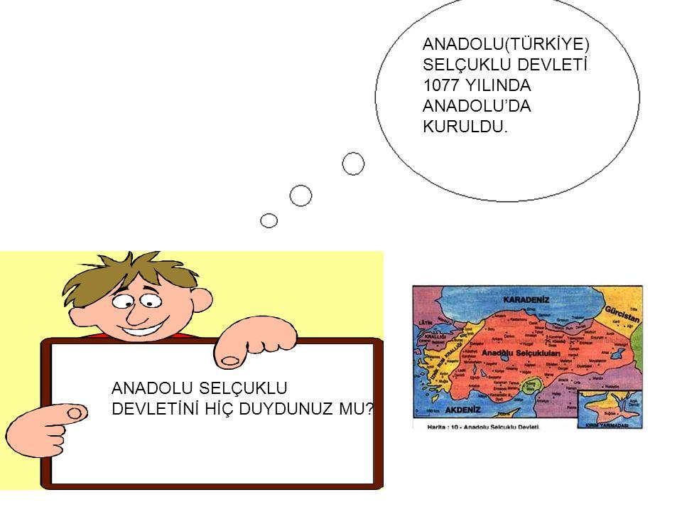 ANADOLU(TÜRKİYE)SELÇUKLU DEVLETİ 1077 YILINDA ANADOLU'DA KURULDU.