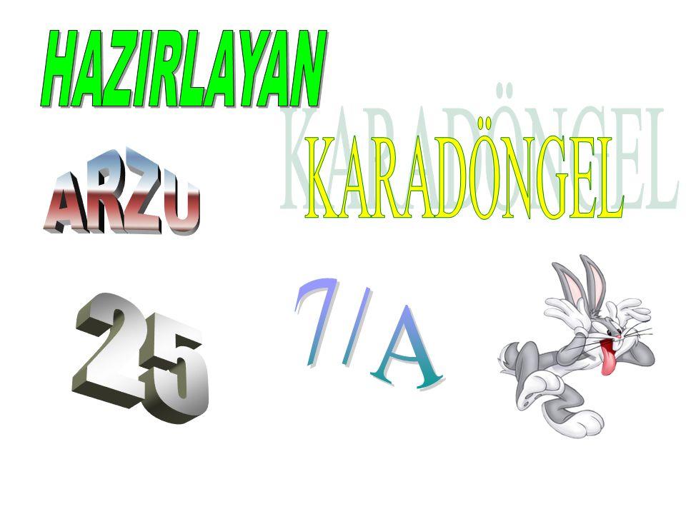 HAZIRLAYAN KARADÖNGEL ARZU 7/A 25