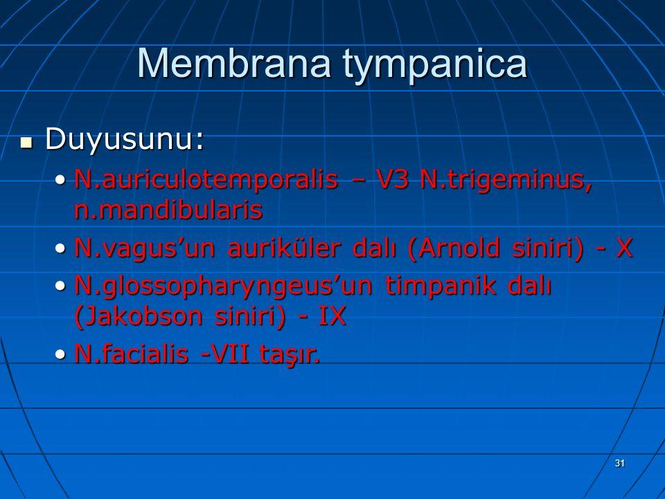 Membrana tympanica Duyusunu: