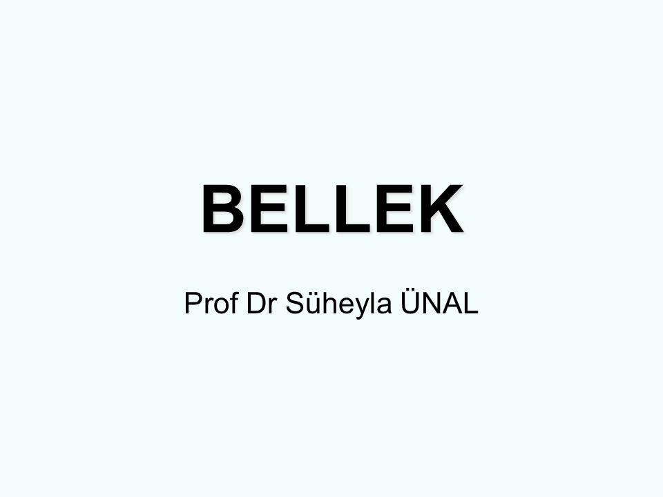 BELLEK Prof Dr Süheyla ÜNAL