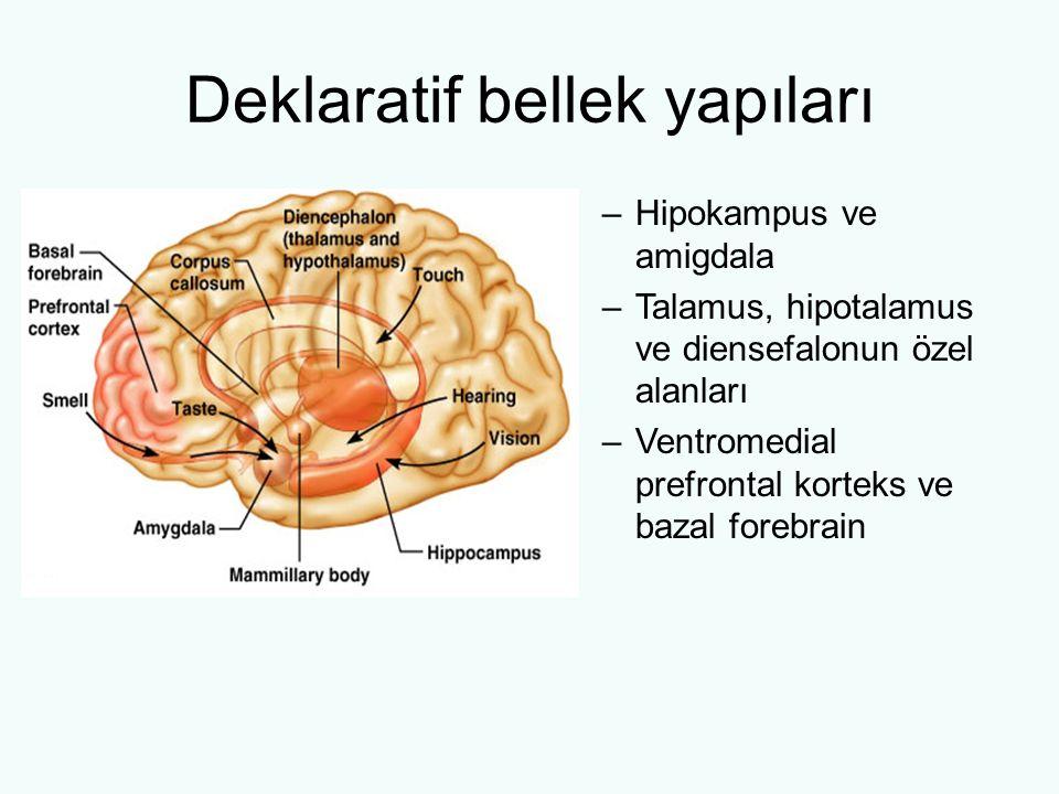 Deklaratif bellek yapıları