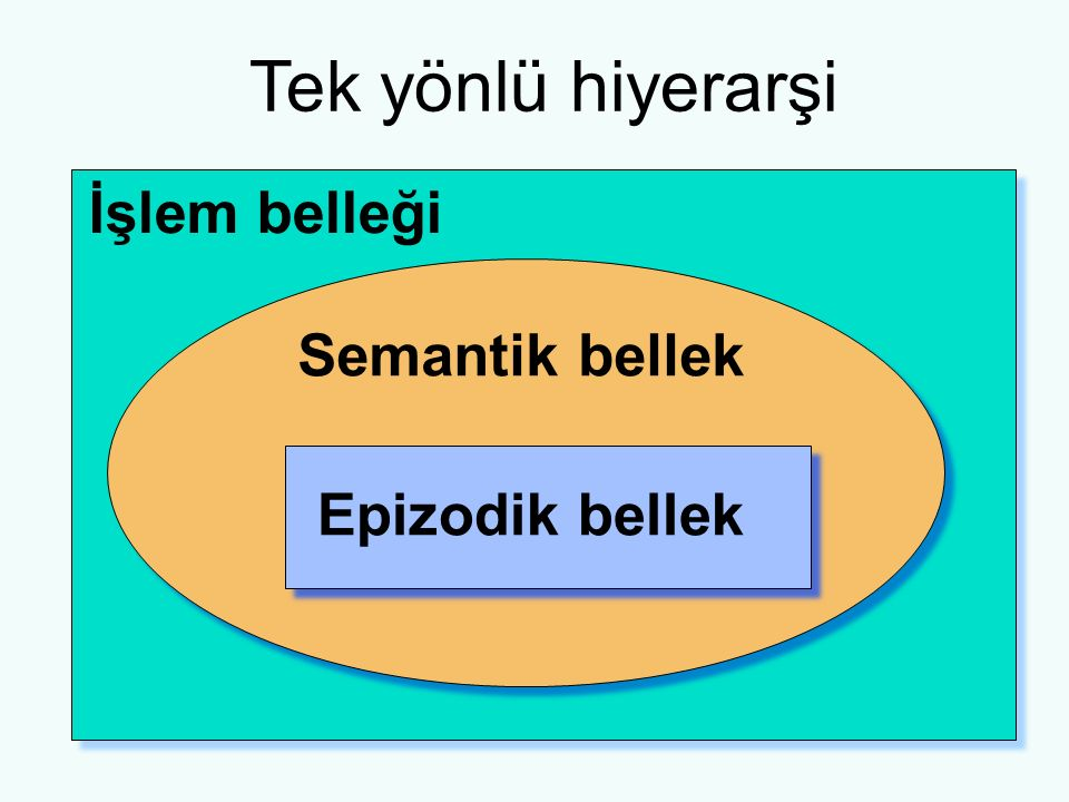 Tek yönlü hiyerarşi İşlem belleği Semantik bellek Epizodik bellek