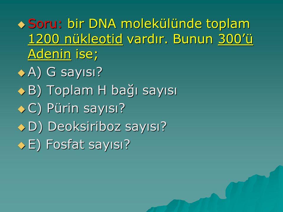 Soru: bir DNA molekülünde toplam 1200 nükleotid vardır