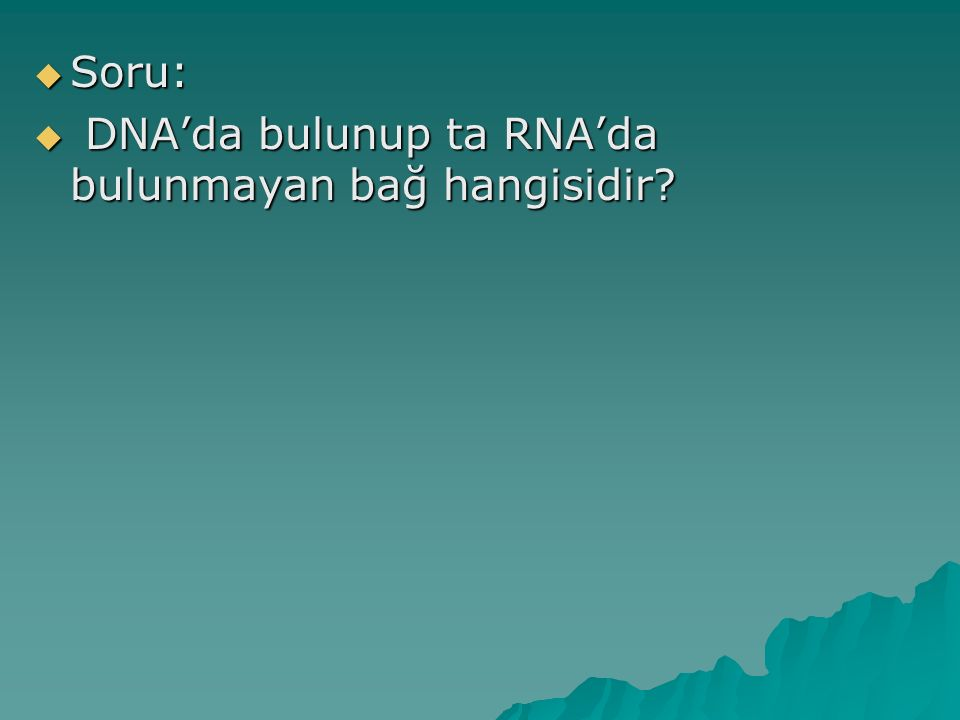 Soru: DNA'da bulunup ta RNA'da bulunmayan bağ hangisidir