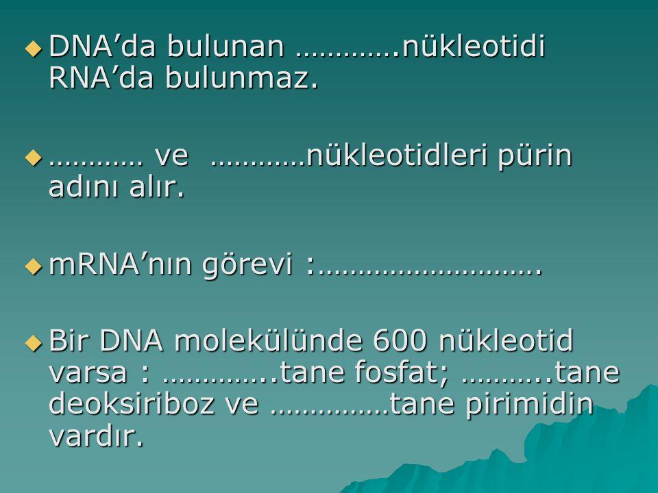 DNA'da bulunan ………….nükleotidi RNA'da bulunmaz.