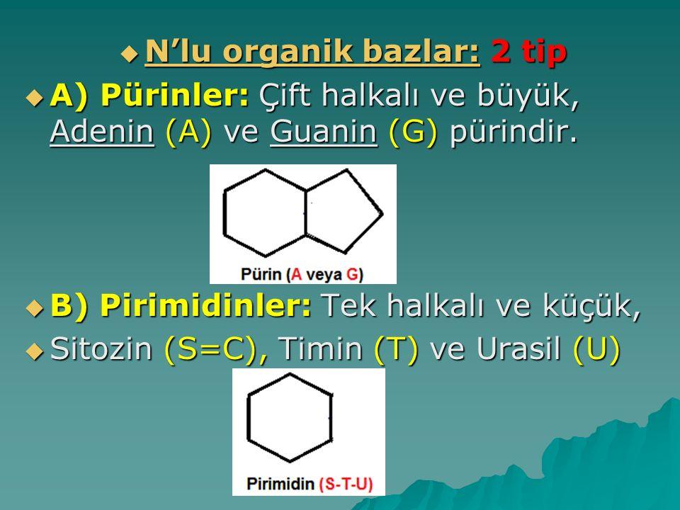 N'lu organik bazlar: 2 tip
