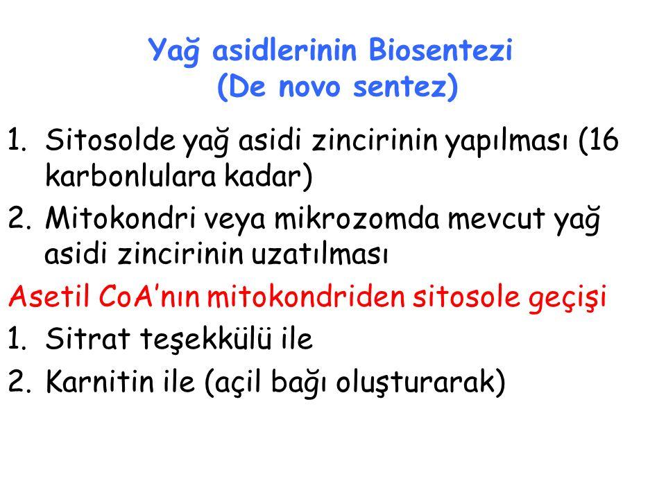 Yağ asidlerinin Biosentezi (De novo sentez)
