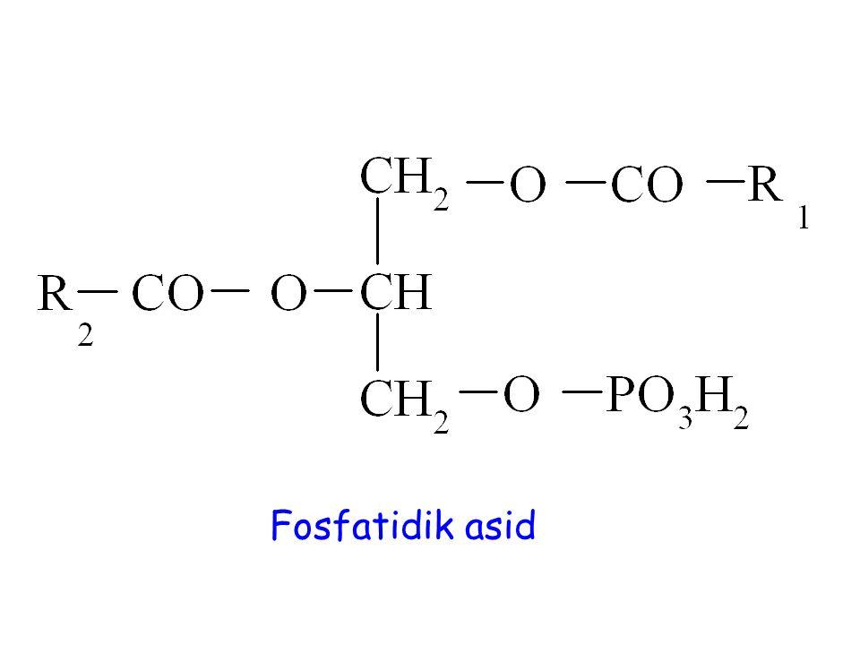 Fosfatidik asid