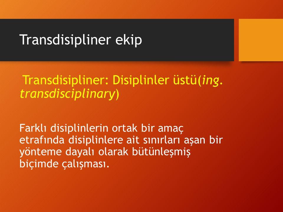 Transdisipliner ekip Transdisipliner: Disiplinler üstü(ing. transdisciplinary)