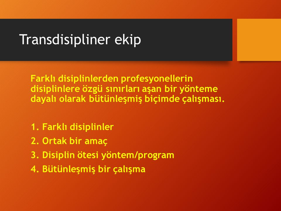 Transdisipliner ekip