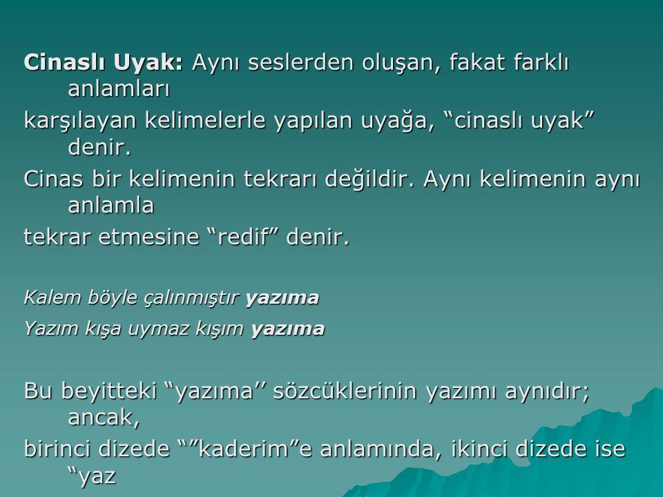 Cinaslı Uyak: Aynı seslerden oluşan, fakat farklı anlamları