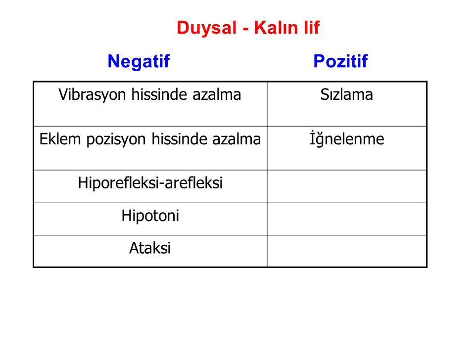 Duysal - Kalın lif Negatif Pozitif Vibrasyon hissinde azalma Sızlama