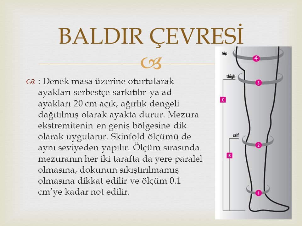 BALDIR ÇEVRESİ