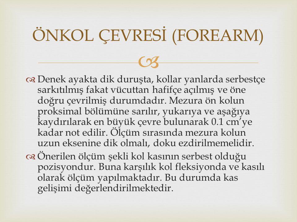 ÖNKOL ÇEVRESİ (FOREARM)