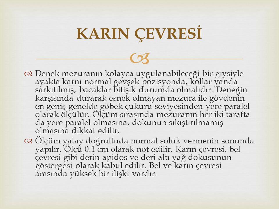 KARIN ÇEVRESİ