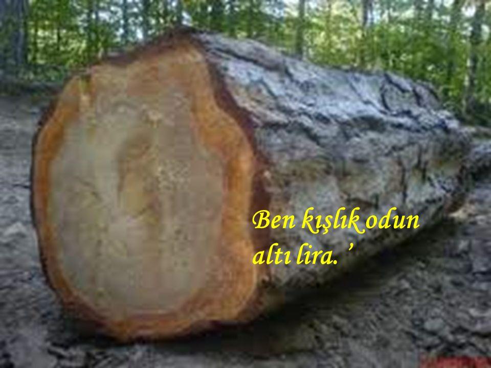 Ben kışlık odun altı lira. '
