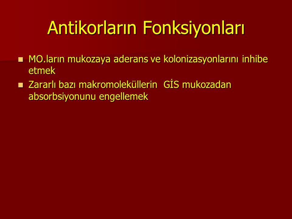 Antikorların Fonksiyonları