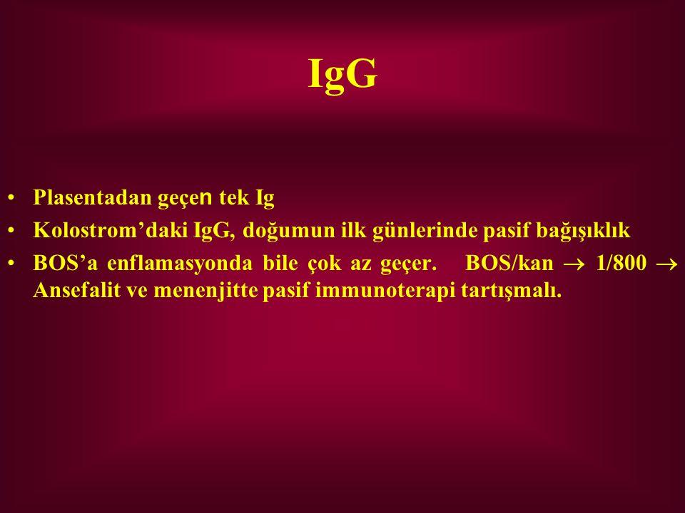IgG Plasentadan geçen tek Ig