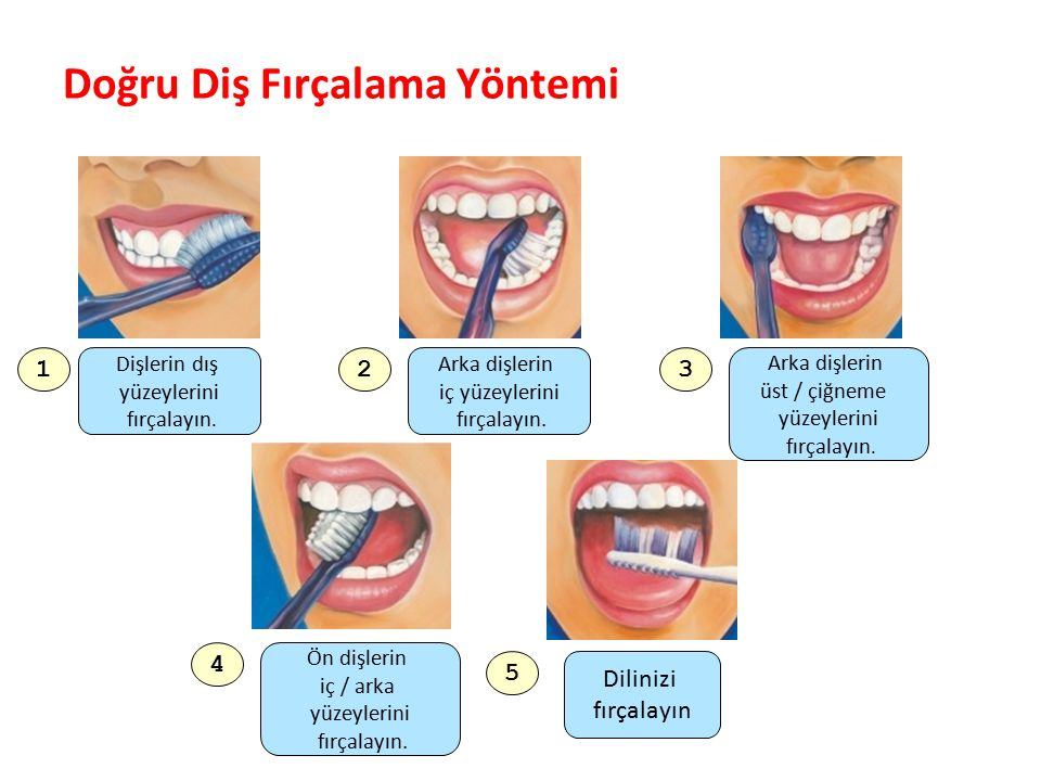 Doğru Diş Fırçalama Yöntemi