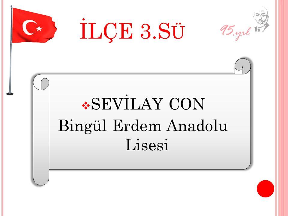 Bingül Erdem Anadolu Lisesi