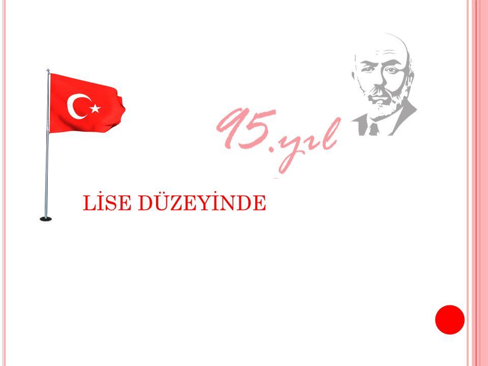LİSE DÜZEYİNDE
