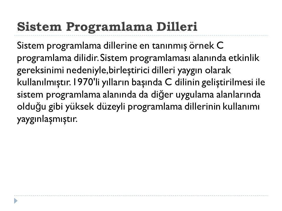 Sistem Programlama Dilleri