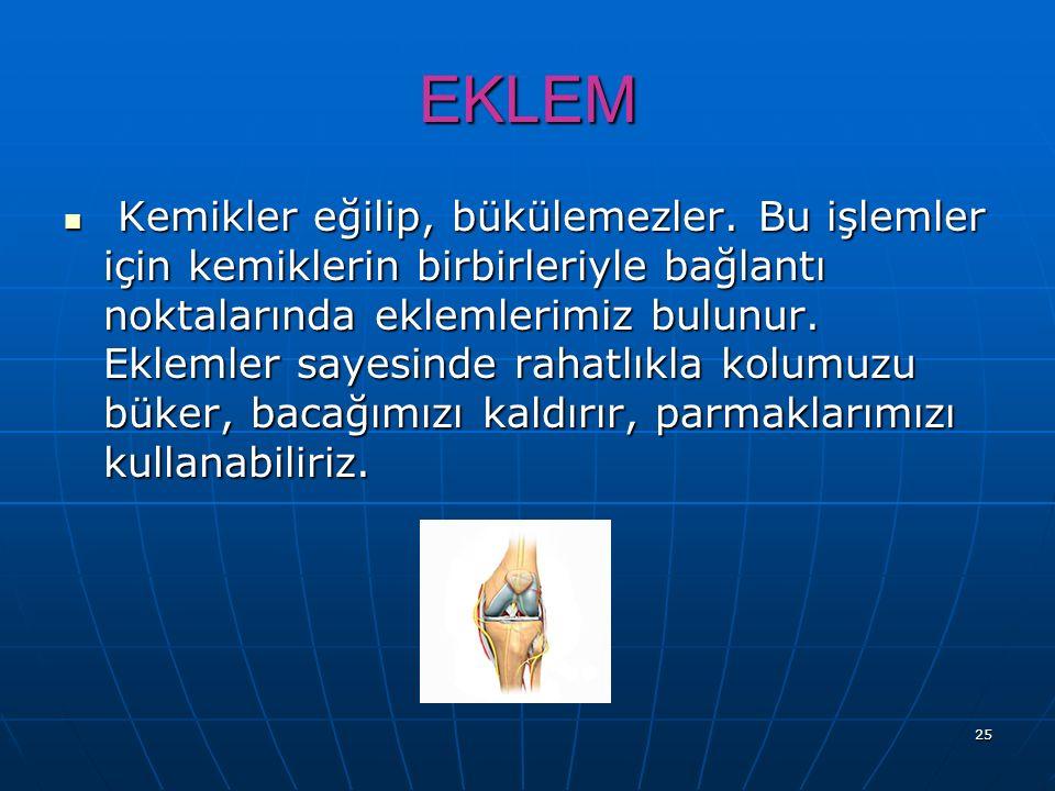 EKLEM