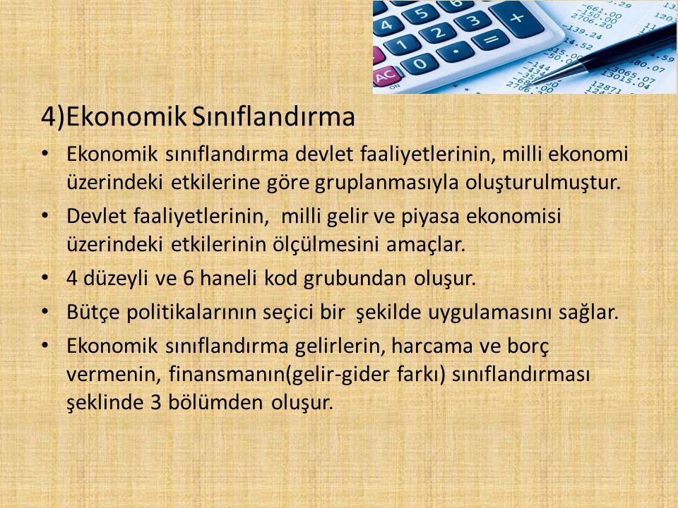 4)Ekonomik Sınıflandırma