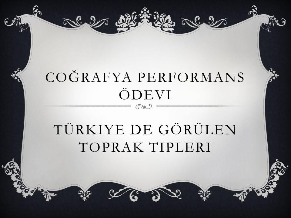 Coğrafya Performans Ödevi Türkiye de Görülen Toprak Tipleri