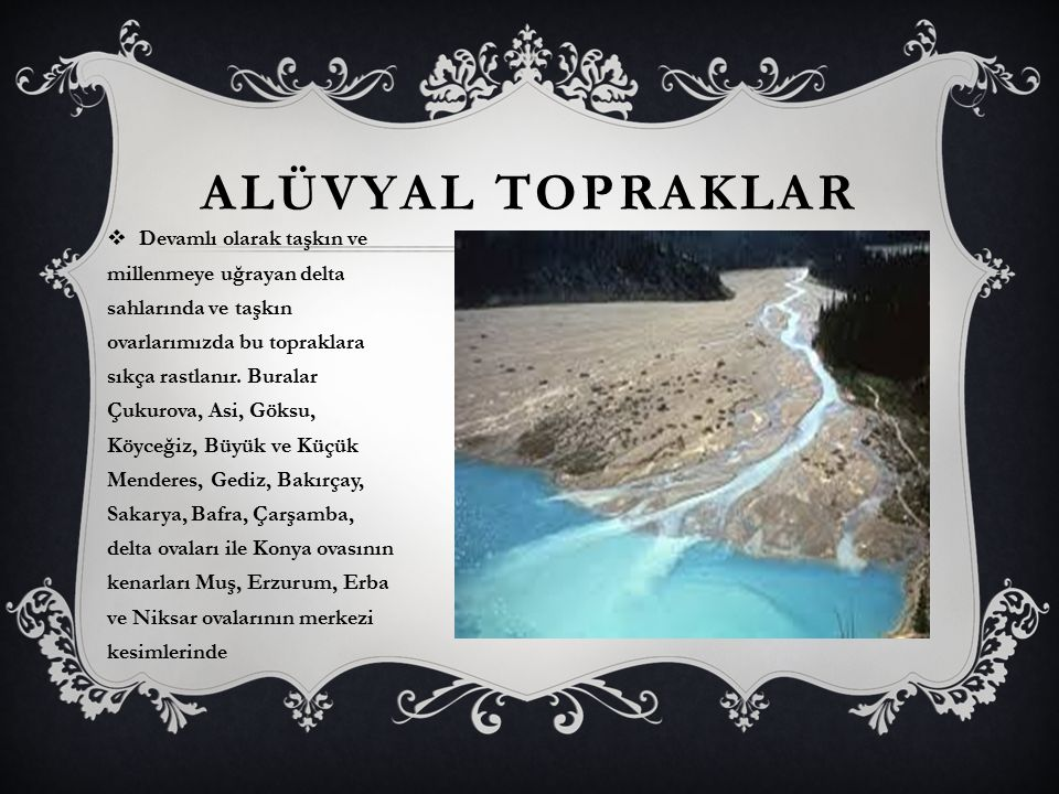 ALÜVYAL TOPRAKLAR