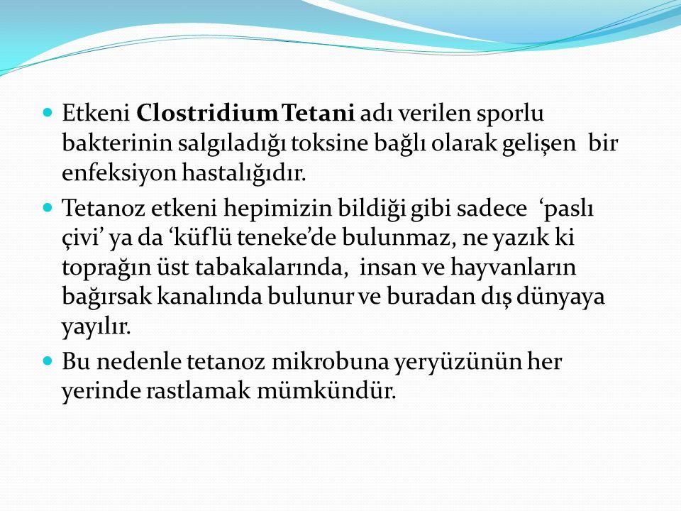 Etkeni Clostridium Tetani adı verilen sporlu bakterinin salgıladığı toksine bağlı olarak gelişen bir enfeksiyon hastalığıdır.