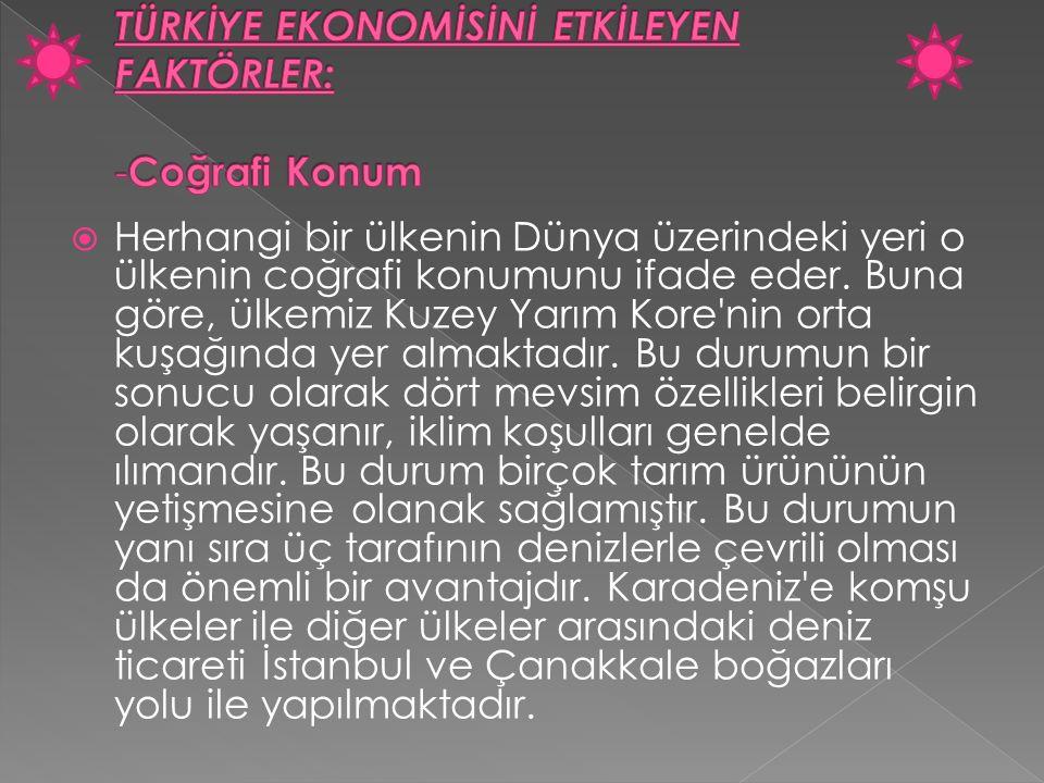 TÜRKİYE EKONOMİSİNİ ETKİLEYEN FAKTÖRLER: -Coğrafi Konum