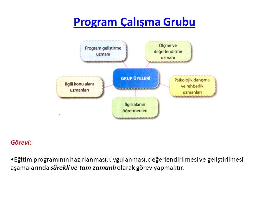 Program Çalışma Grubu Görevi: