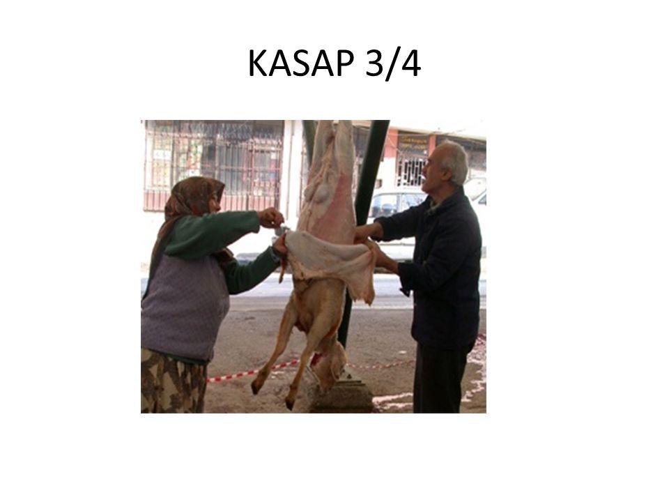 KASAP 3/4