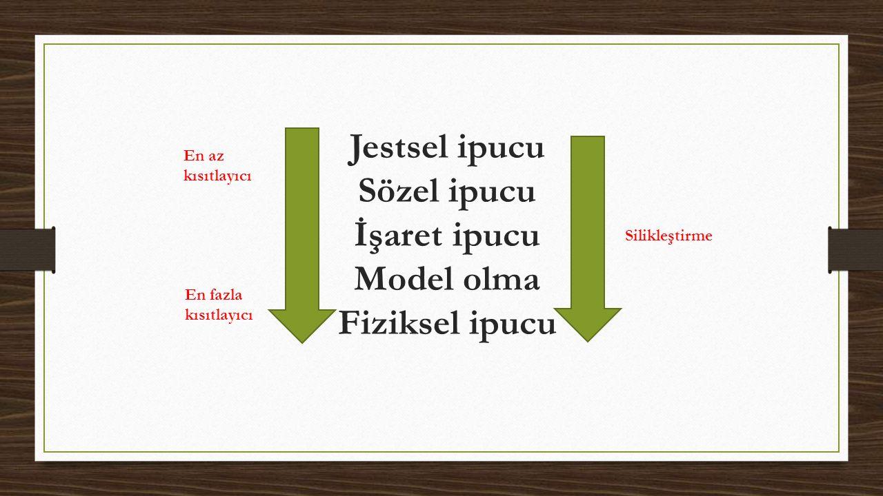 Jestsel ipucu Sözel ipucu İşaret ipucu Model olma Fiziksel ipucu