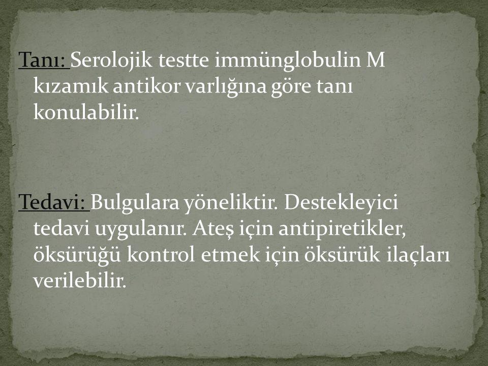 Tanı: Serolojik testte immünglobulin M kızamık antikor varlığına göre tanı konulabilir.
