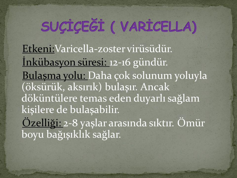 Etkeni:Varicella-zoster virüsüdür. İnkübasyon süresi: 12-16 gündür