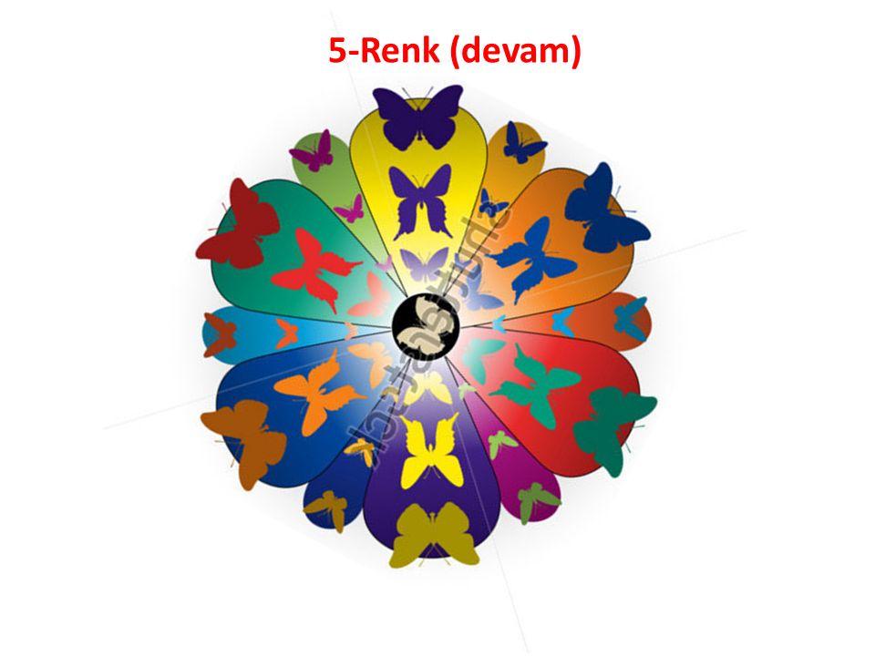 5-Renk (devam)