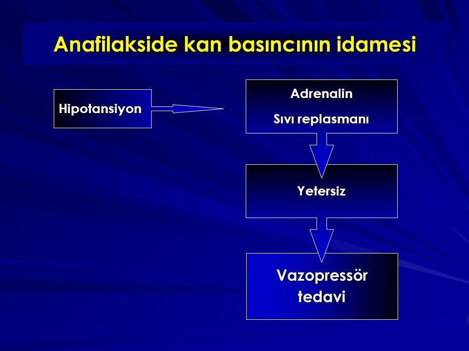 Anafilakside kan basıncının idamesi